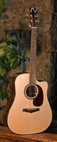 Lone Wolf Guitars Handcrafted Acoustic Guitar For Sale