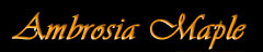 Ambrossia Maple Wood